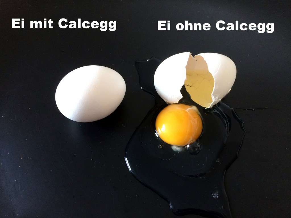 Ei_Calcegg